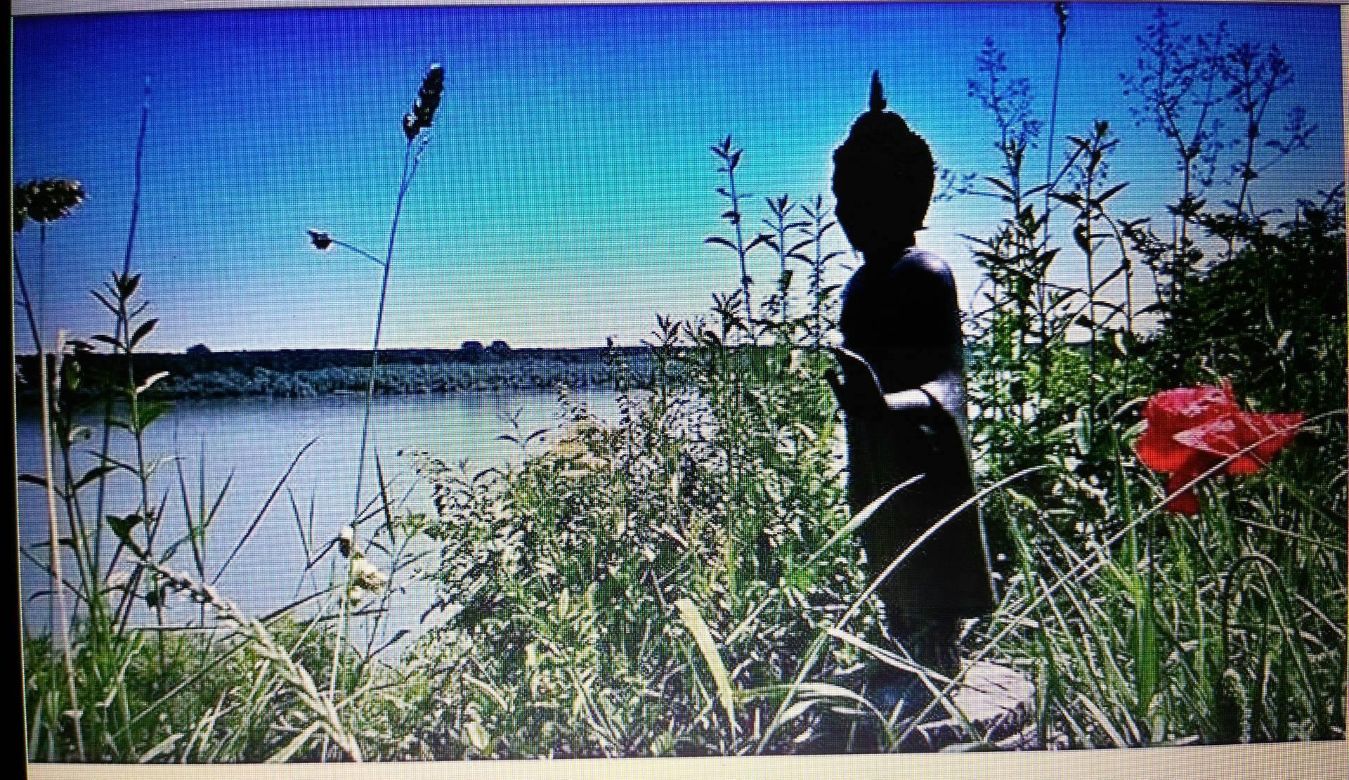 Statua Bude u vrtu Muzeja Macura foto: DeMaterijalizacija umetnosti